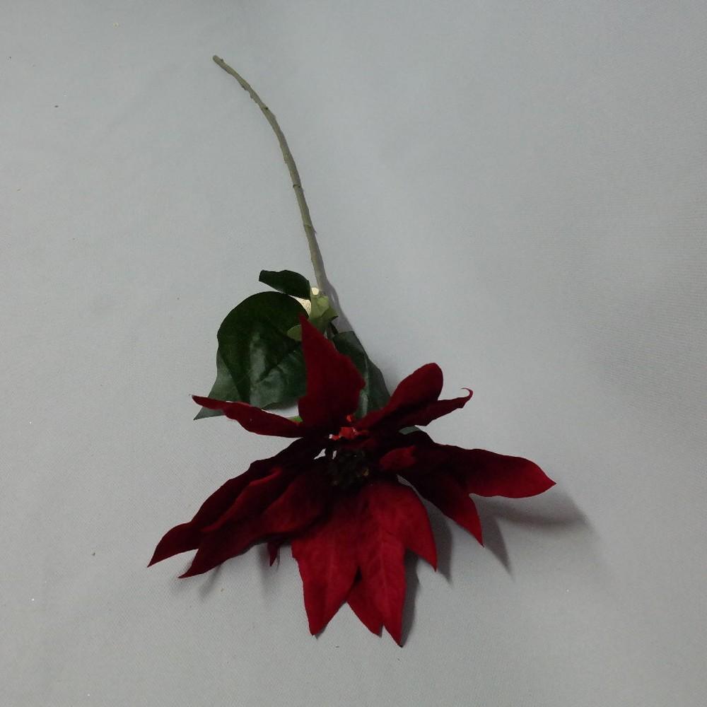 květina 89,-