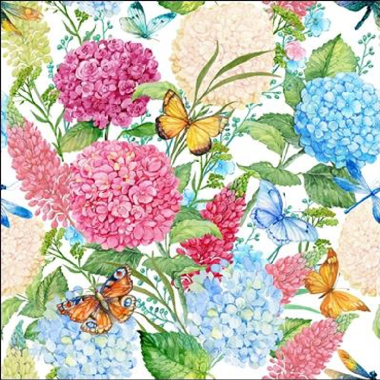 bavlna horten,motýli 200 gr digi