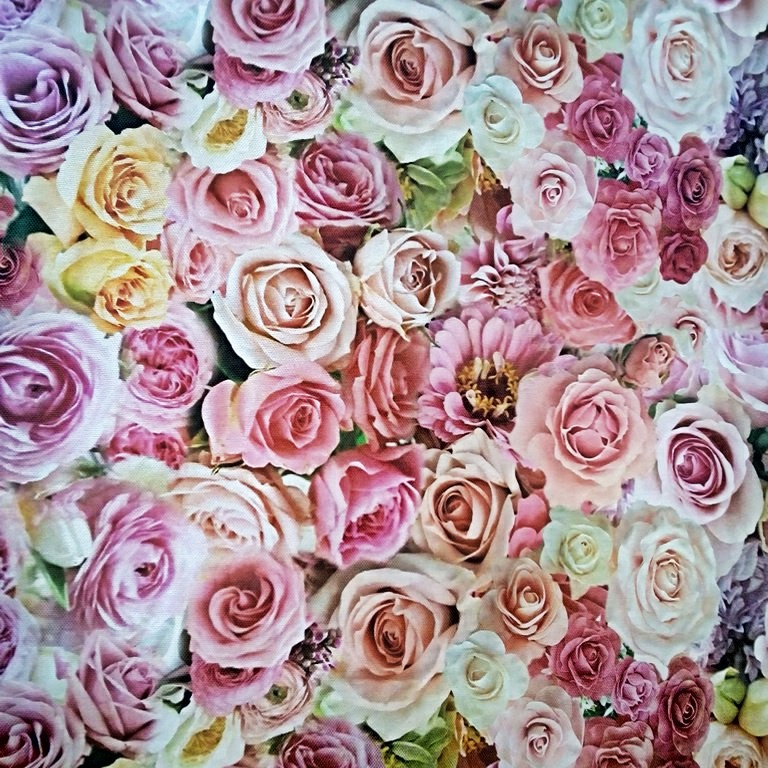 bavlna růže digi 200 gr