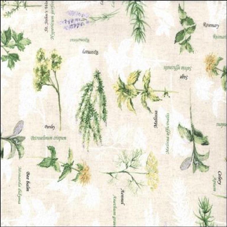 loneta bylinky