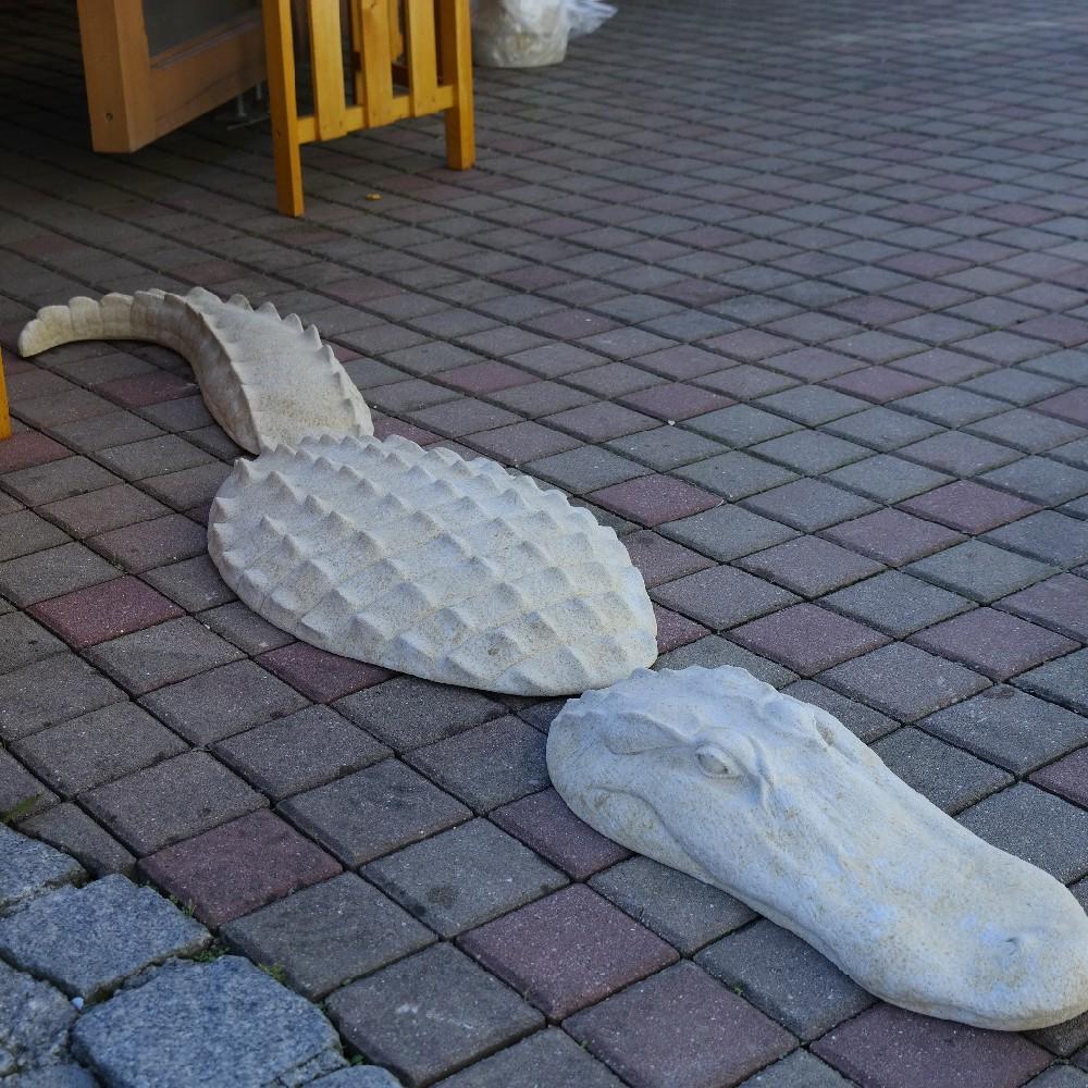 pískovec krokodýl