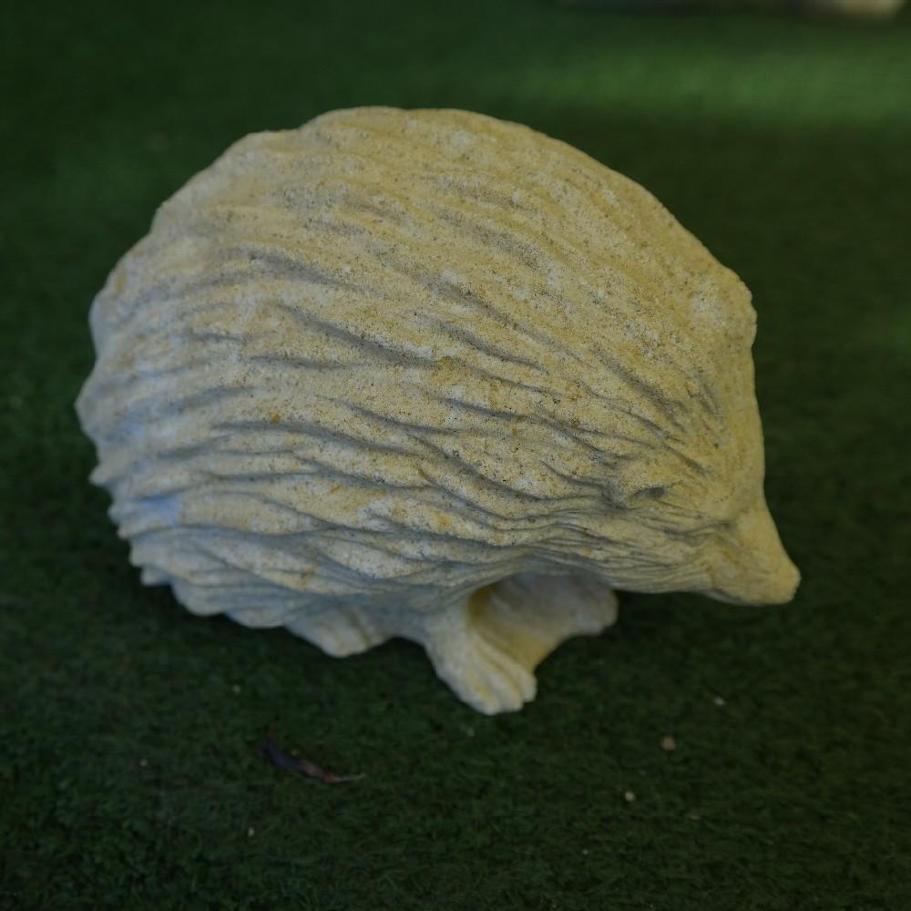 pískovec ježeček
