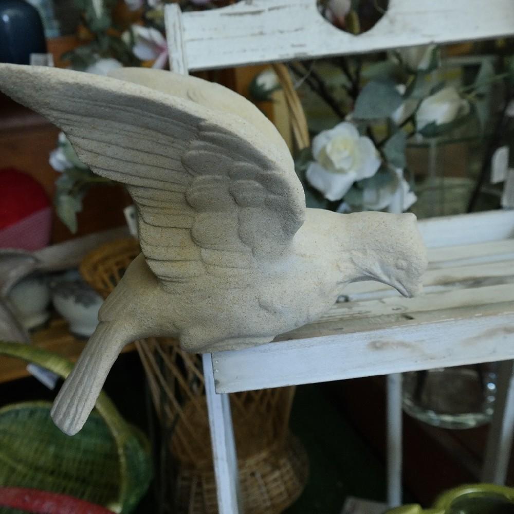 pískovec holubice křídla