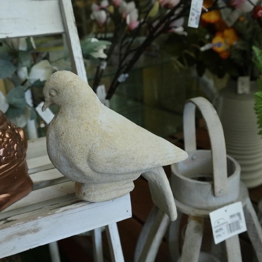pískovec holubice sedící