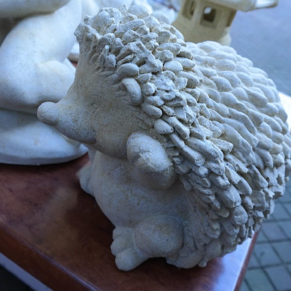 pískovec ježek