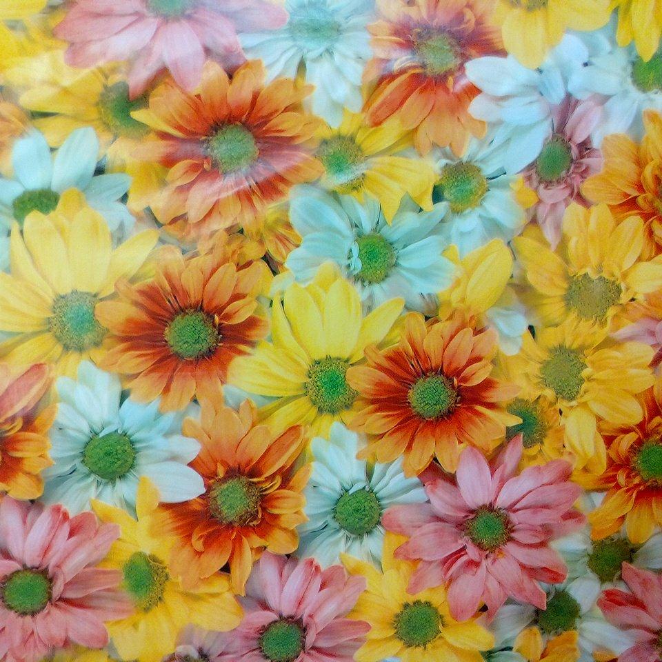 ubrus pvc květy