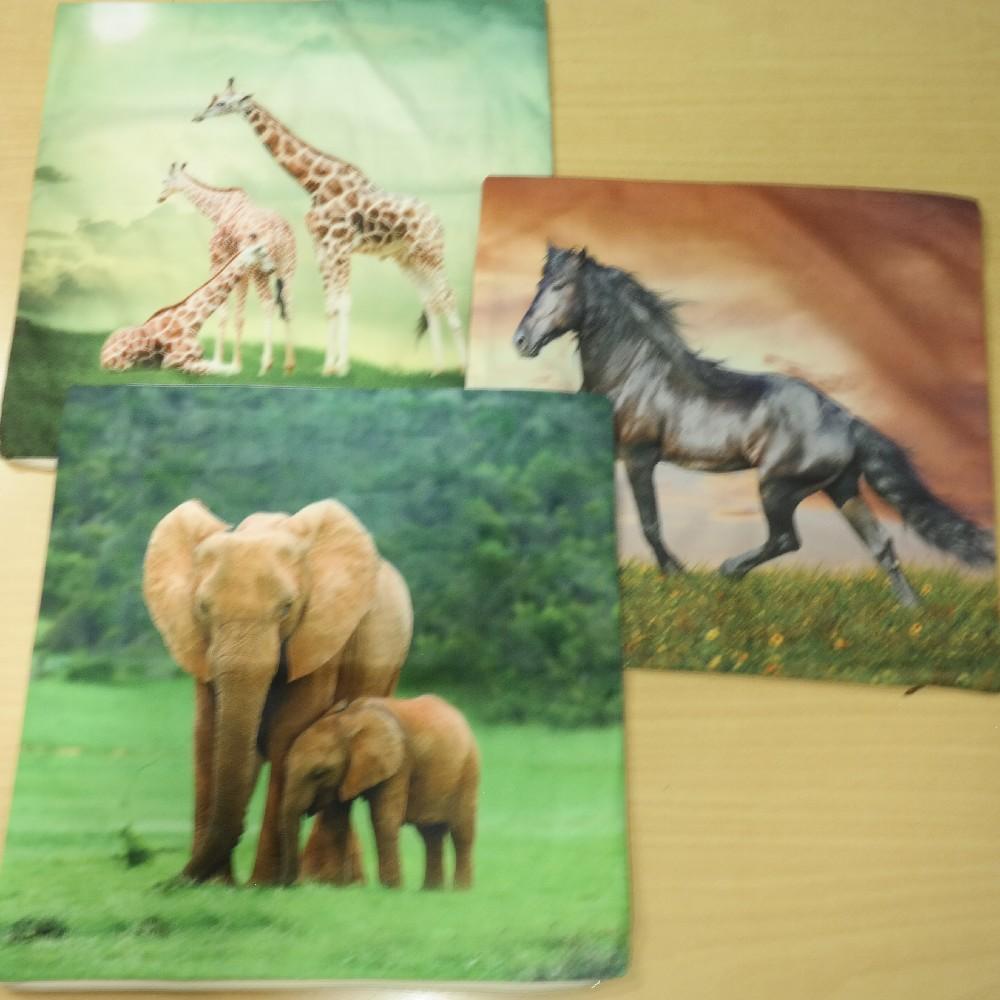 povlak 45*45 cm žirafa,slon,kůň