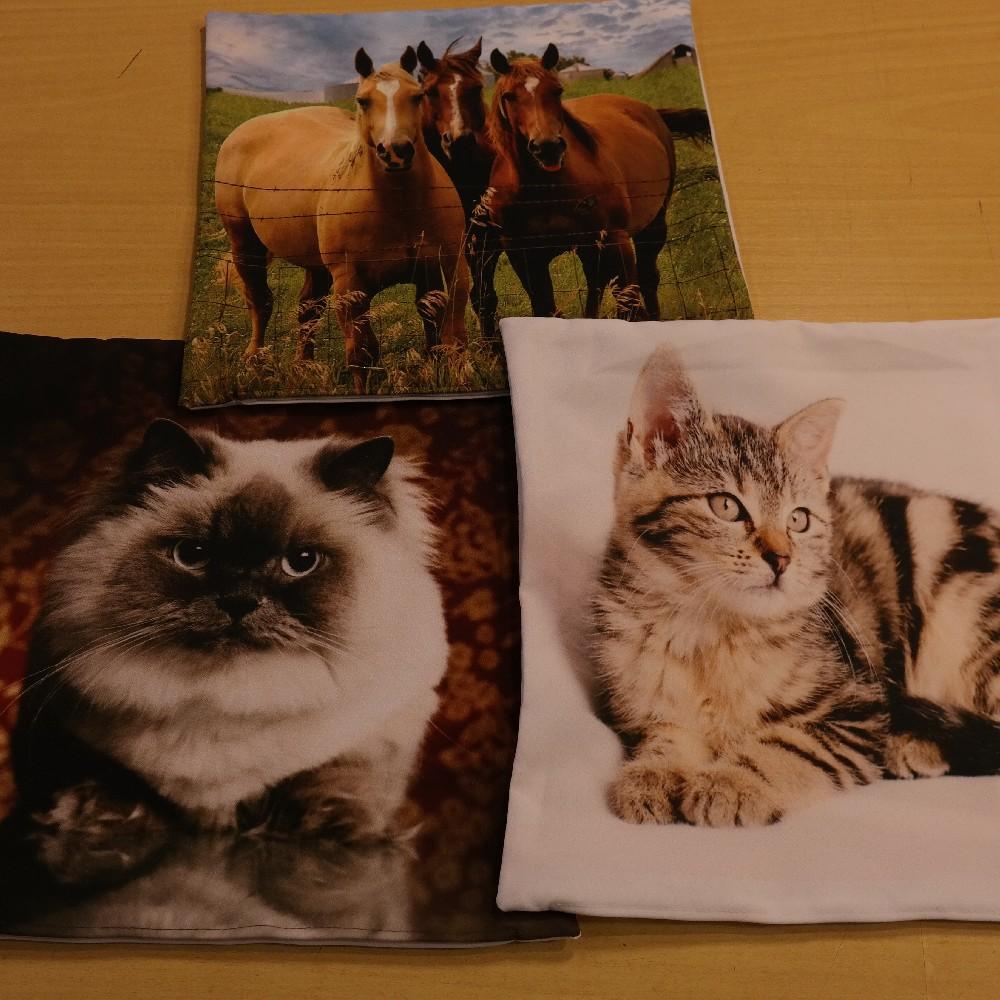 povlak 40x40 foto satén zvířátka