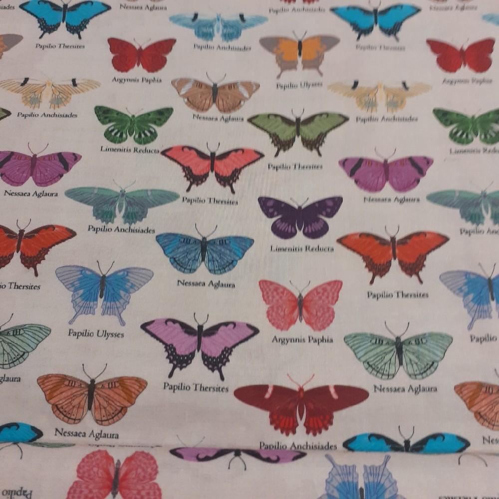 bavlna motýlci