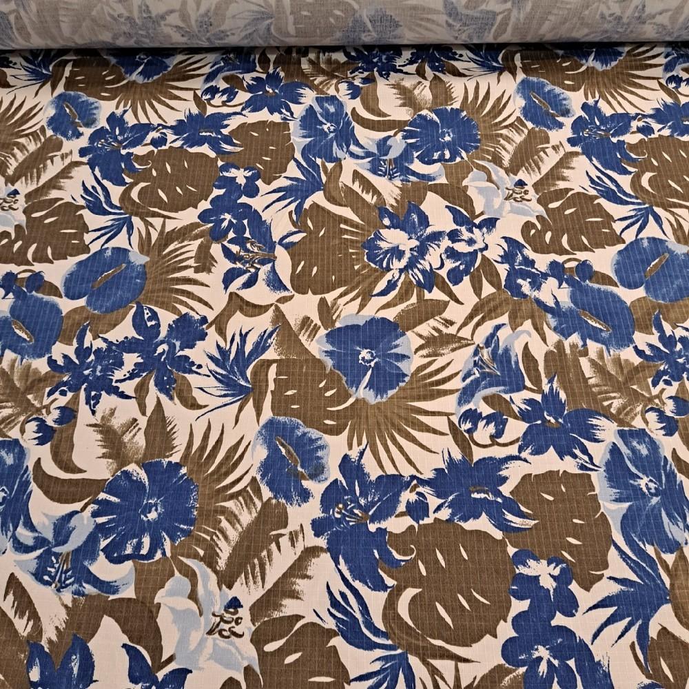 slunečníkovina bílá modro-khaky květ
