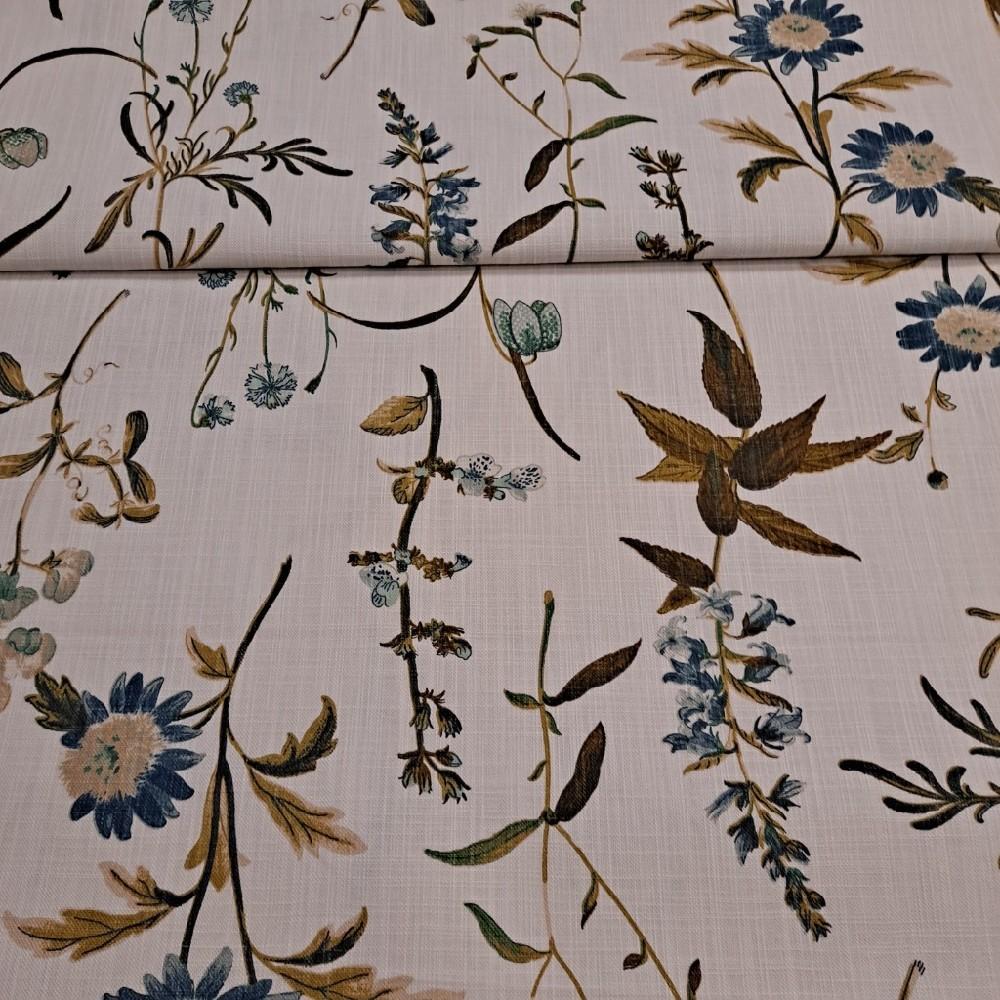 bavlna smetanová rostlinky