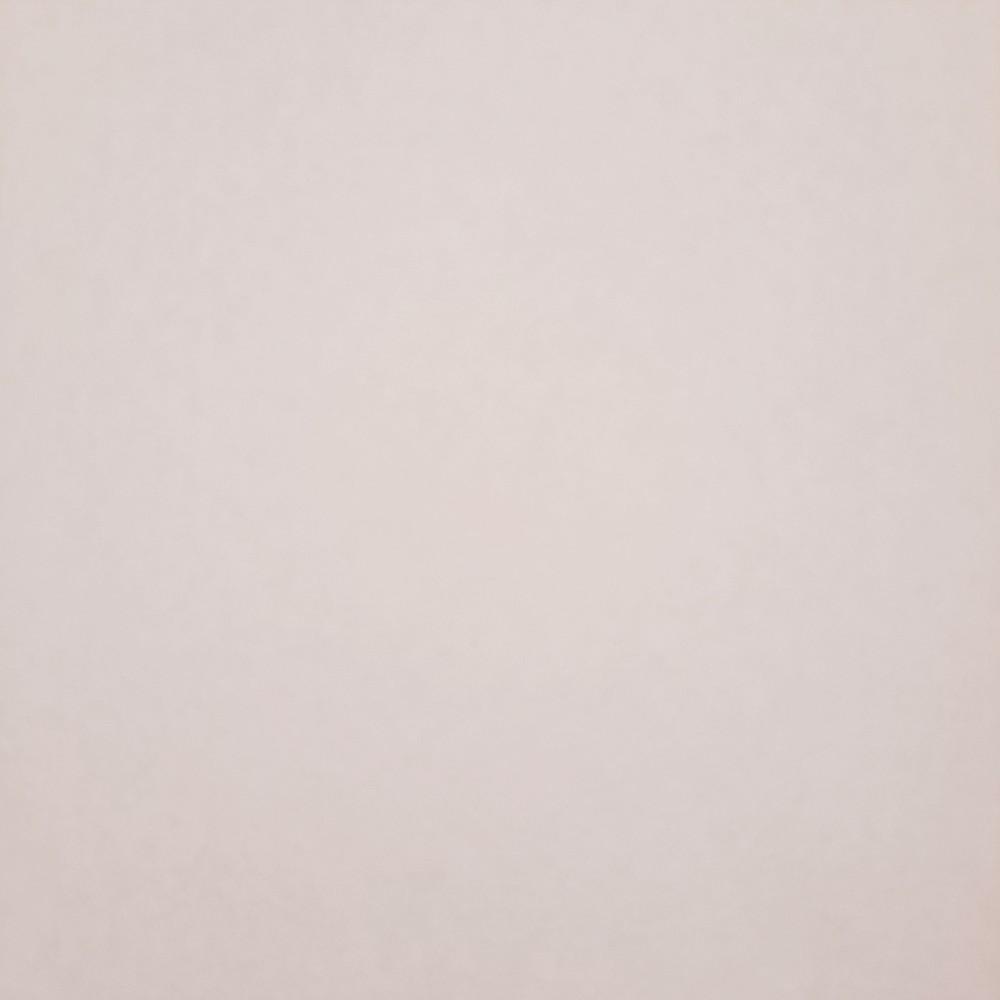 ubrus PVC bílý bez vzoru