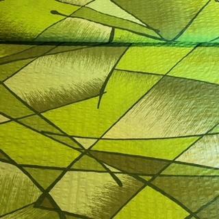 bavlna krep zelenozelenýčáry š.160 2.j.