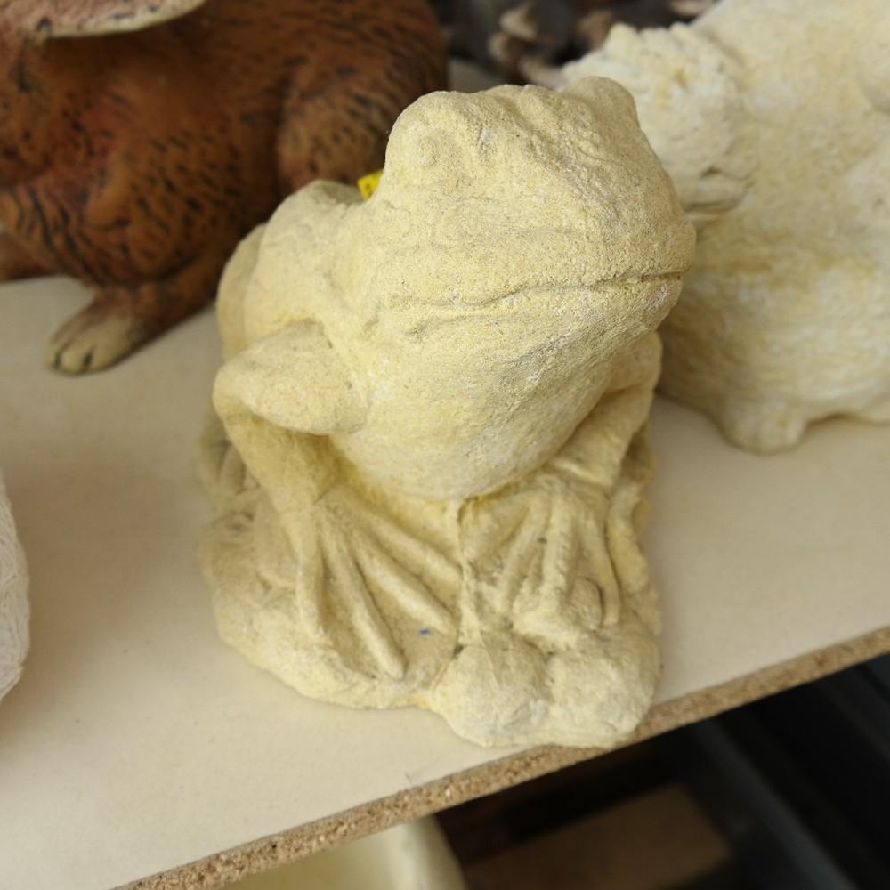 pískovec žába
