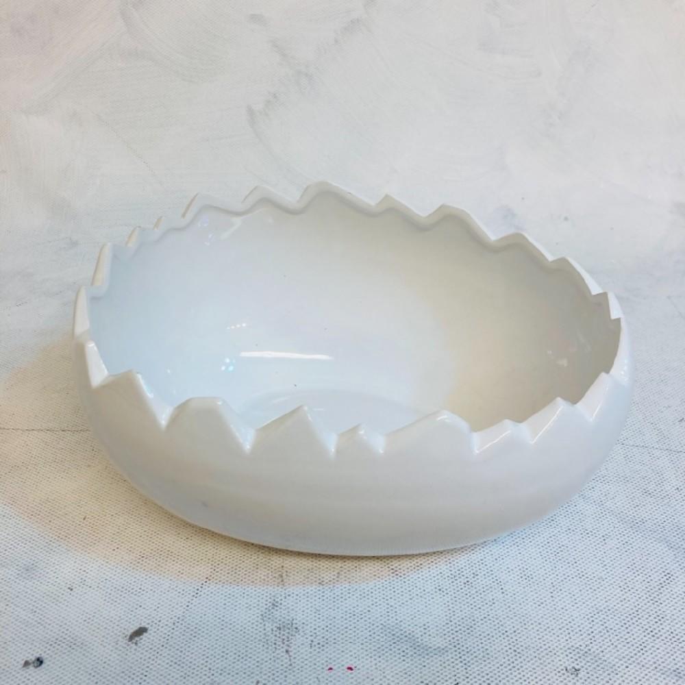skořápka porcelánová