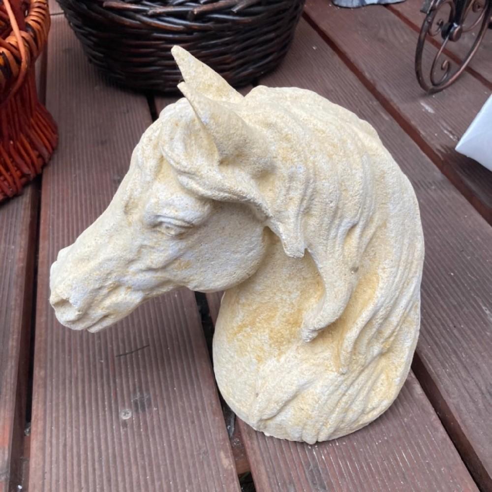 hlava kůń